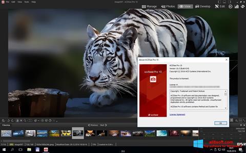 Screenshot ACDSee Pro Windows 8