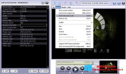 Screenshot FLV Player Windows 8