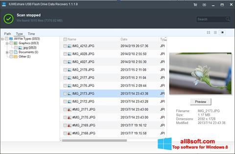Screenshot USB Flash Drive Recovery Windows 8