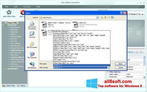 Screenshot Any Video Converter Windows 8