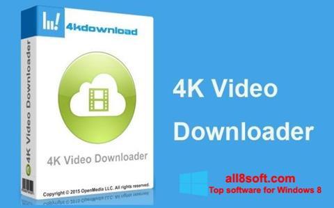Screenshot 4K Video Downloader Windows 8