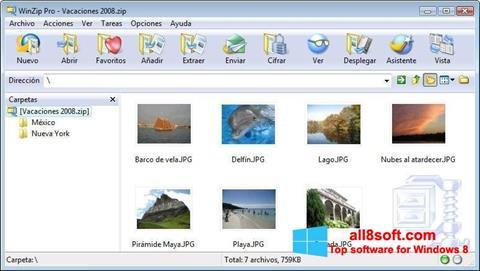 Screenshot WinZip Windows 8