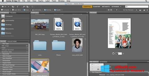 Screenshot Adobe Bridge Windows 8