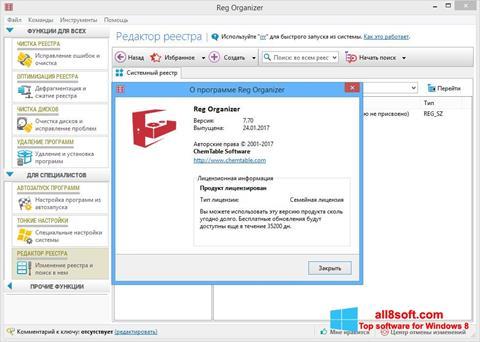 Screenshot Reg Organizer Windows 8