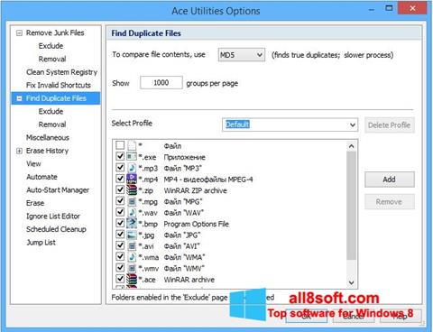 Screenshot Ace Utilities Windows 8
