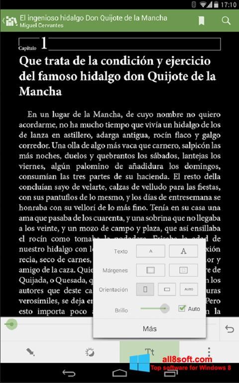 Screenshot BookReader Windows 8