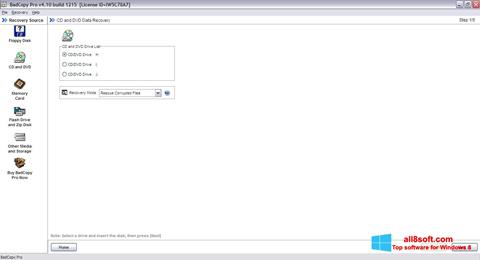 Screenshot BadCopy Pro Windows 8